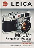 Leica M6 to M1: Rangefinder Practice