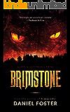 Brimstone (The Iron Legacy Book 1)