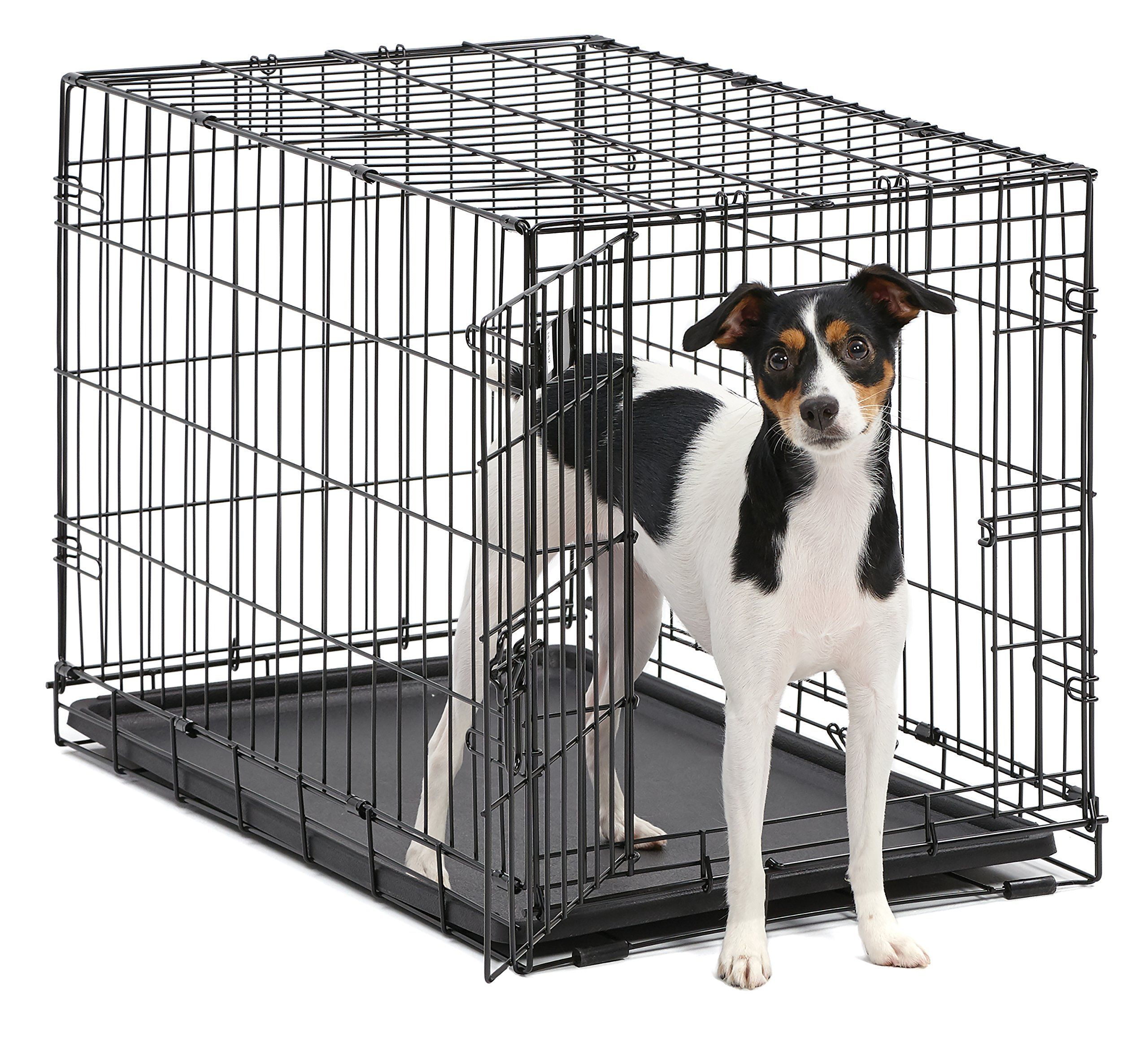 Dog Crate | MidWest iCrate 30 Inch Folding Metal Dog Crate w/ Divider Panel,| Medium Dog, Black by MidWest Homes for Pets