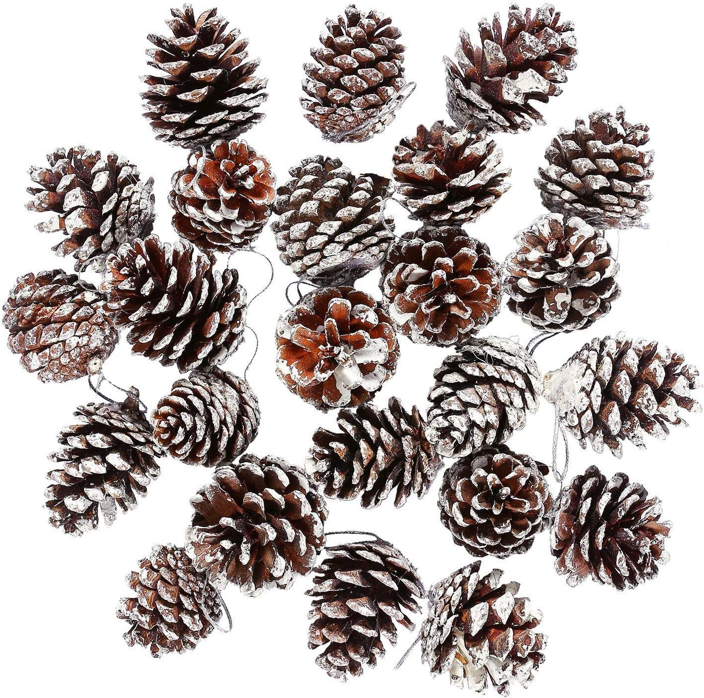 HDMI SM 6 Pcs Pine Cones Brown Christmas Pine Cones Tree Ornaments Hanging Pendant with String for Christmas Tree Decoration Miniature Garden Decoration