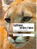 Lightning Strikes Twice: A Short Story about Intuition