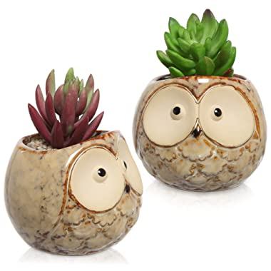 Set of 2 Owl Design Mini Ceramic Plant Container Flower Pots, Window Sill Succulent Planters, Brown