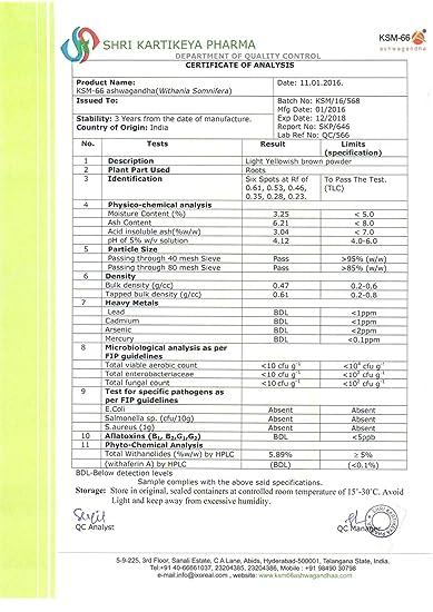 Brain Forza Organic KSM-66 Ashwagandha Root Extract 1,000mg/day for Brain,  Stress, Memory and