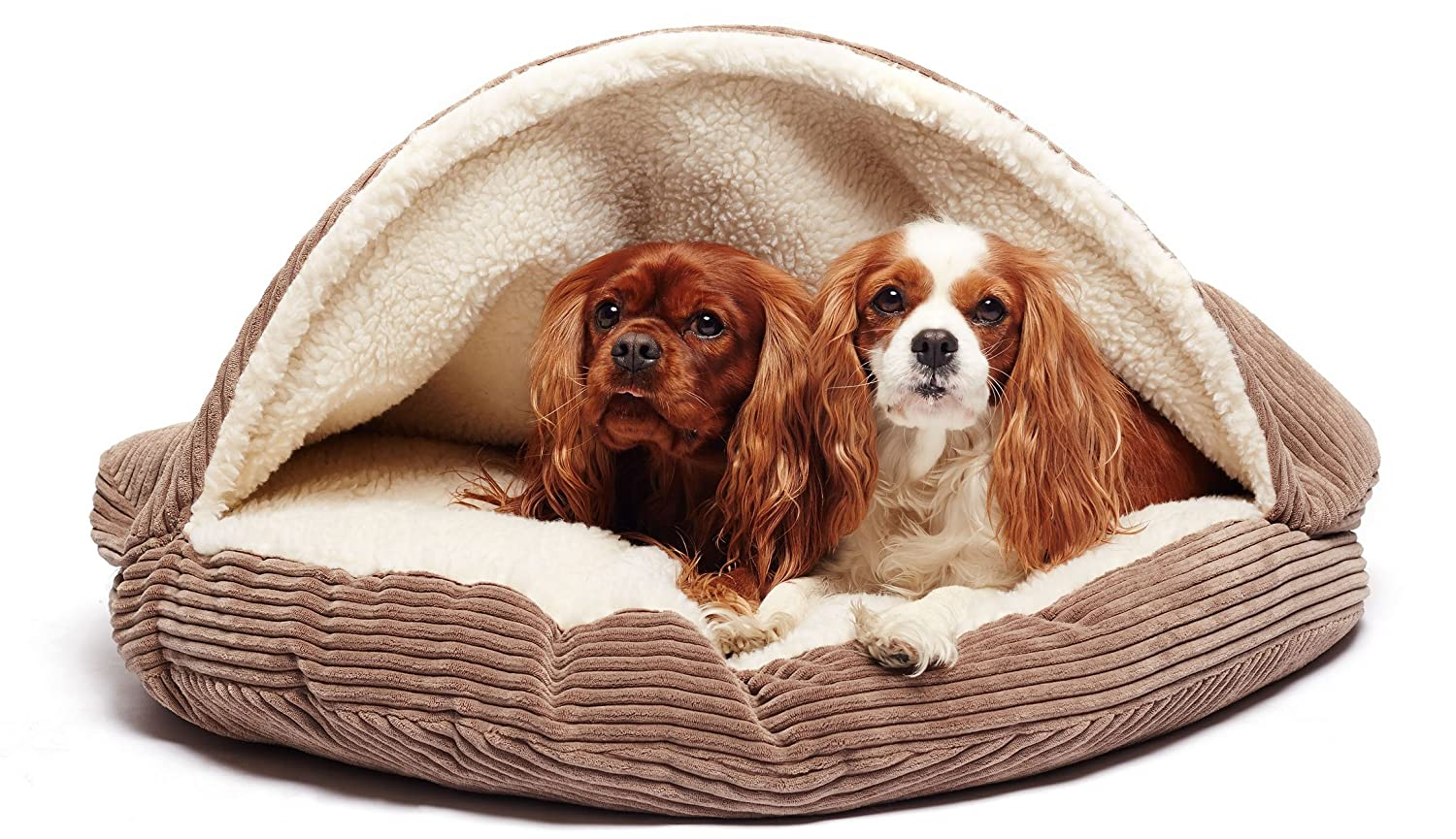 cozy beds and australia the best cave bed dog costumes l