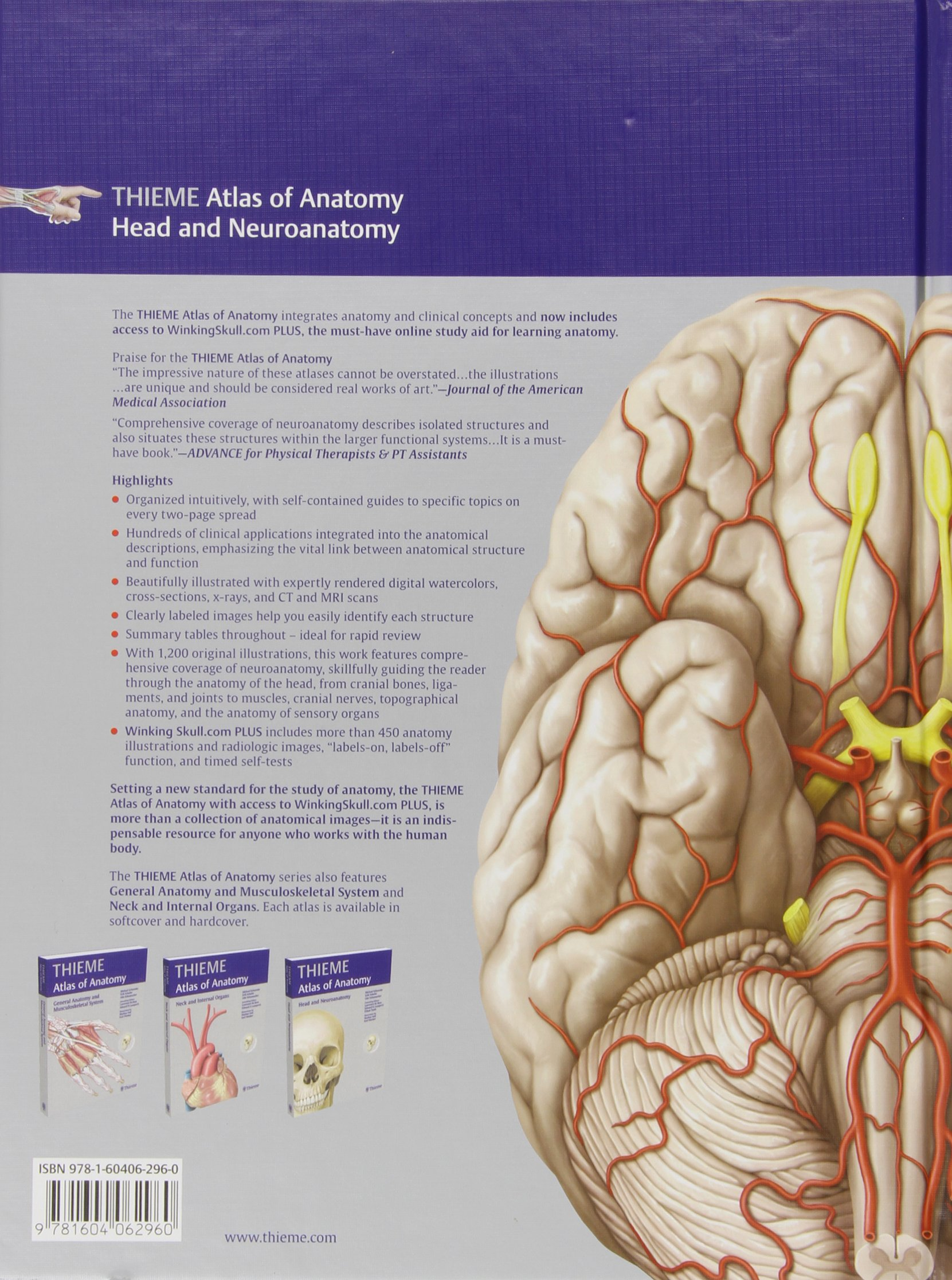 Head and Neuroanatomy Thieme Atlas of Anatomy : With Scratch Code ...
