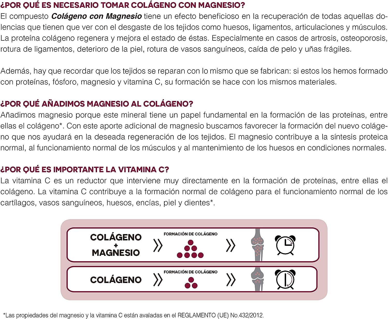 Ana Maria Lajusticia - Colágeno con magnesio – 350 gramos (sabor ...