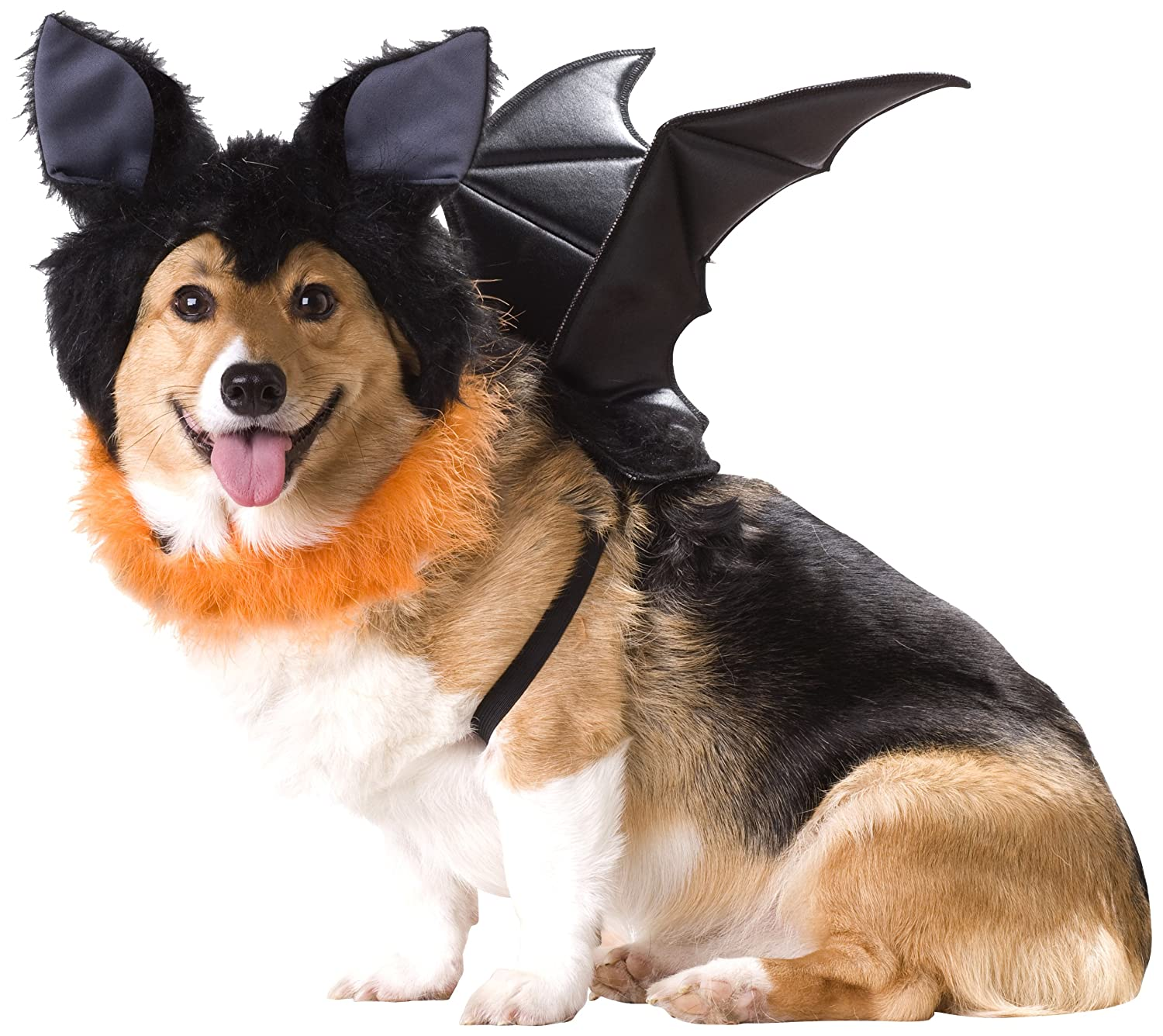 Amazon.com  Animal Planet Bat Dog Costume Small  Pet Costumes  Pet Supplies  sc 1 st  Amazon.com : halloween costumes animal  - Germanpascual.Com
