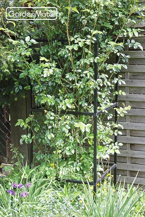 GardenMate – Pérgola Rank Columna celosía Ampliable – 1 módulo 50 x 50 x 50 cm: Amazon.es: Jardín