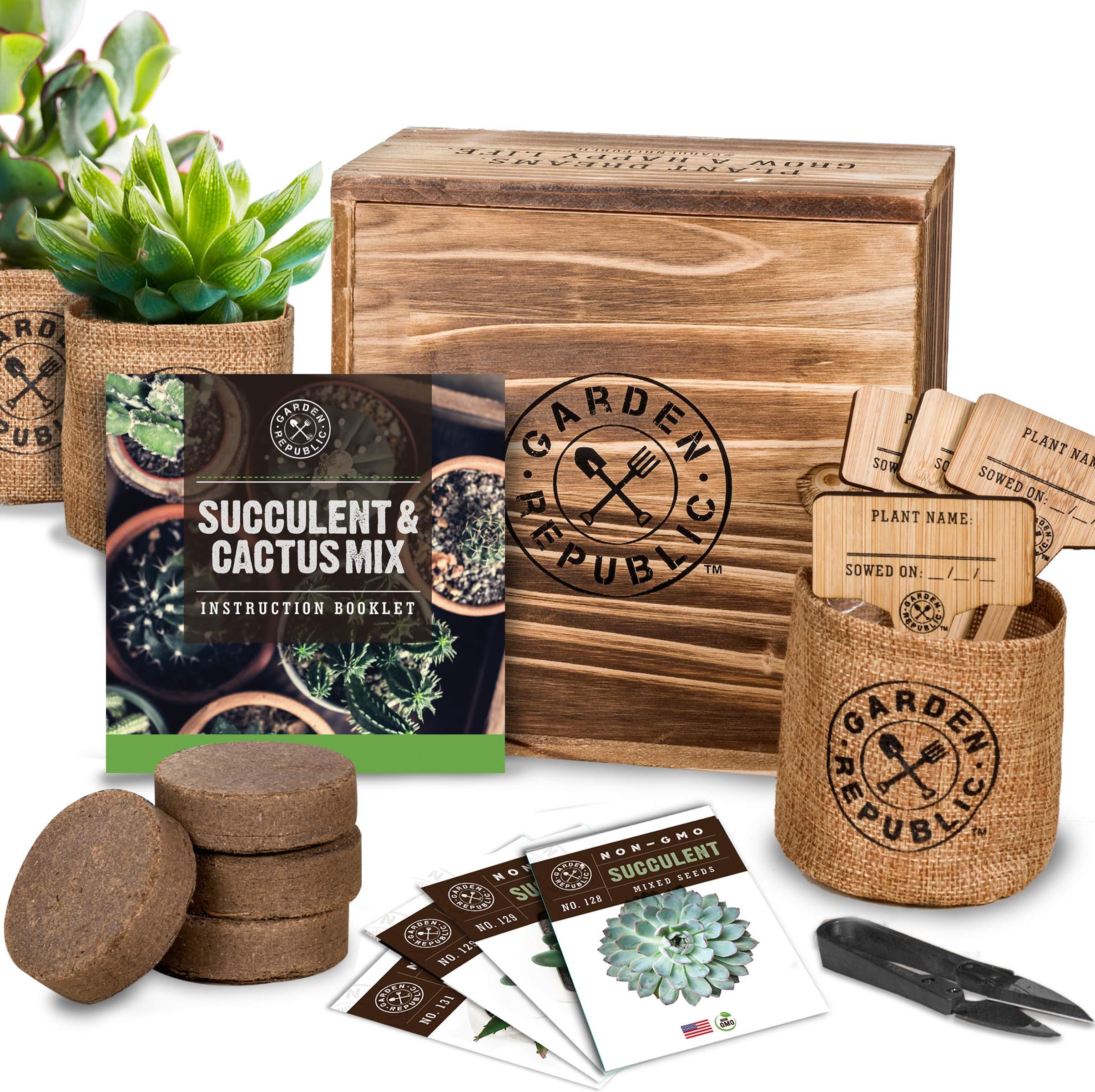Cactus Succulent Seed Starter Kit - Indoor Garden Grow Kits, Seeds for Planting Mini Cactus Succulent Plants, Plant Markers, Soil, Pots, Wood Box - Gardening Gifts, Terrarium, Cacti Succulents Decor by · GARDEN REPUBLIC ·