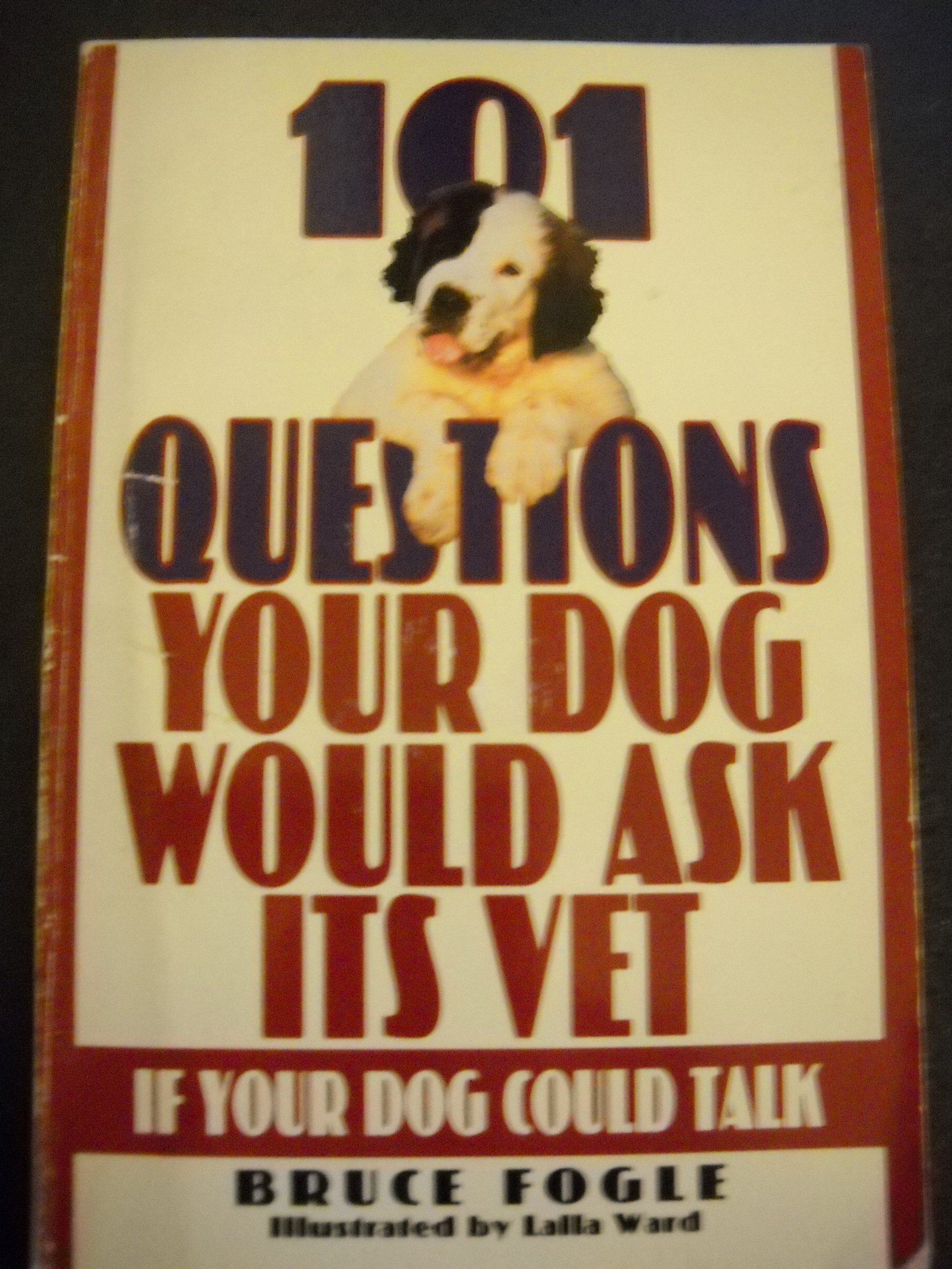 101 Questions Your Dog Would Ask Its Vet If Your Dog Could Talk