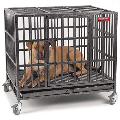 Best Heavy-Duty Dog Crate​
