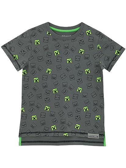 f97a6f3bcaaee Minecraft Boys T-Shirt