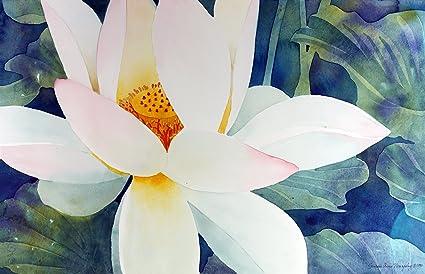 Amazoncom Style Arthouse Secret Of The Lotus Giclee Print Of