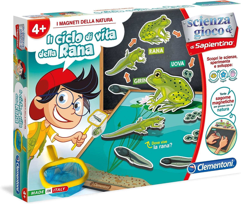Clementoni - Juego Educativo Il Ciclo di Vita Della Pianta - con Figuras magnéticas para Aprender sobre la Naturaleza - Modelo n. 13976 Ciclo de Vida de Las Ranas