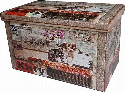 Biscottini Pouff Contenitore Pouf Poggiapiedi in Ecopelle Poltrona con Coperchio L 60 x PR 36 x H 36 cm