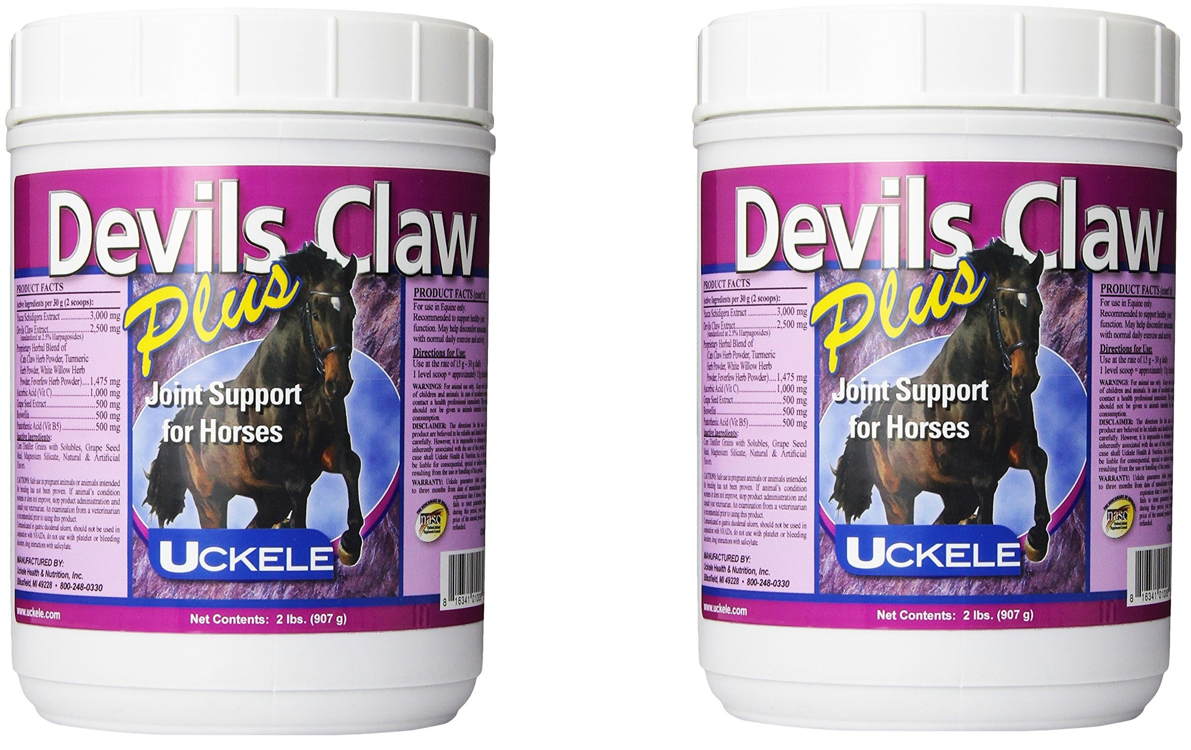 (2 Pack) Uckele Devils Claw Plus Horse Supplement, 2-Pounds Each by UCKELE HEALTH & NUTRITION