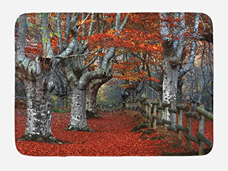 29.5 X 17.5 Inches Birch Tree Bath Mat Seasonal Woodland Non-Slip Plush Mat