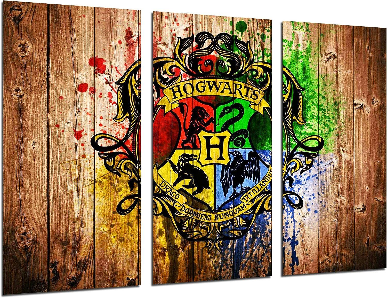 Cuadros Cámara 27206 Cuadro Fotográfico, Multicolor, XXL