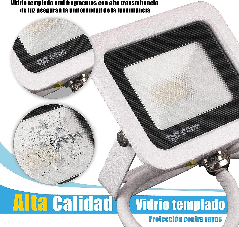 POPP® juegos de 5 y 10 Floodlight Foco Proyector LED 10w 20w 30w 50w para Exterior Iluminación Decoración 6000k luz fria Impermeable IP65 Blanco transparente y Opal (Focos blanco Opal10w, 1 unidad):