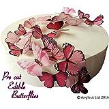 24 X PRE-CUT BEAUTIFUL MEDIUM PINK BUTTERFLIES EDIBLE RICE / WAFER PAPER PRE CUT CUPCAKE CAKE DESSERT TOPPERS BIRTHDAY PARTY WEDDING BABY SHOWER DECORATIONS (Medium)