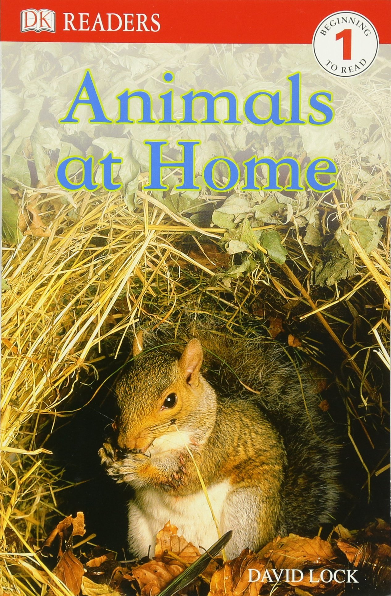 Lucky Animals For Home