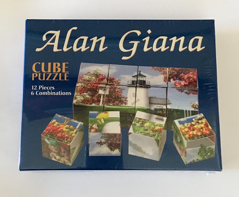 愛用  Alan Gianaキューブパズル12ピース6組み合わせ B002YTRUT4 B002YTRUT4, GAOS:25116940 --- quiltersinfo.yarnslave.com