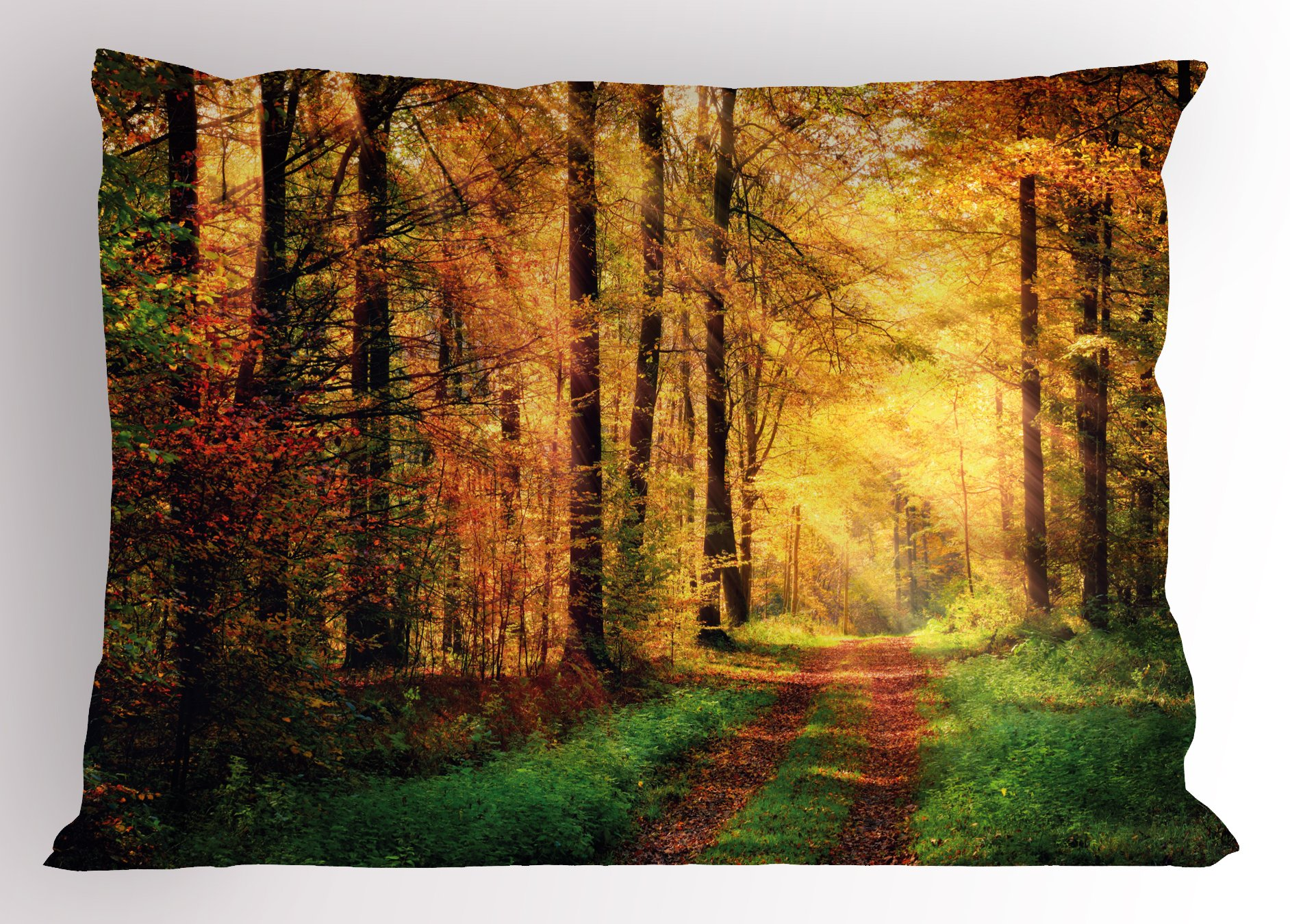 Lunarable Modern Pillow Sham, Autumn Forest Scenery with Rays of Warm Sun on Shady Trees Woods Warm Feelings Art, Decorative Standard Size Printed Pillowcase, 26 X 20 inches, Yellow Green