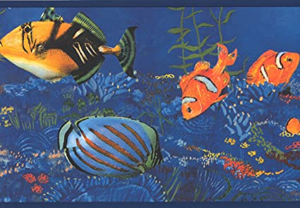 yellow black orange striped fish seahorse in blue ocean nauticalimage unavailable