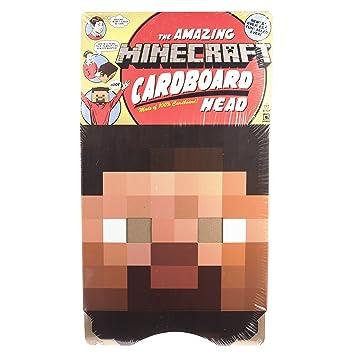 Minecraft - Máscara para disfraz de adulto (Spin Master 6024716)