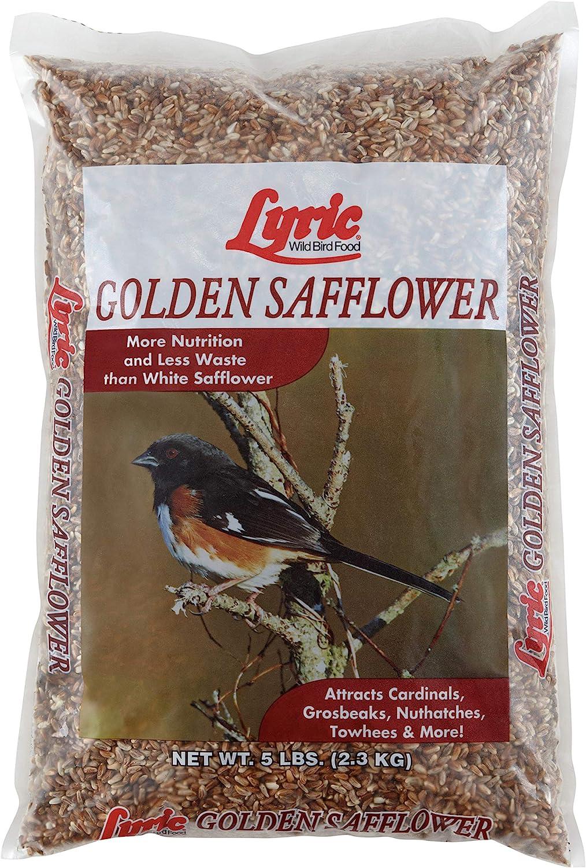 Lyric 2647444 Golden Safflower Seed - 5 lb.