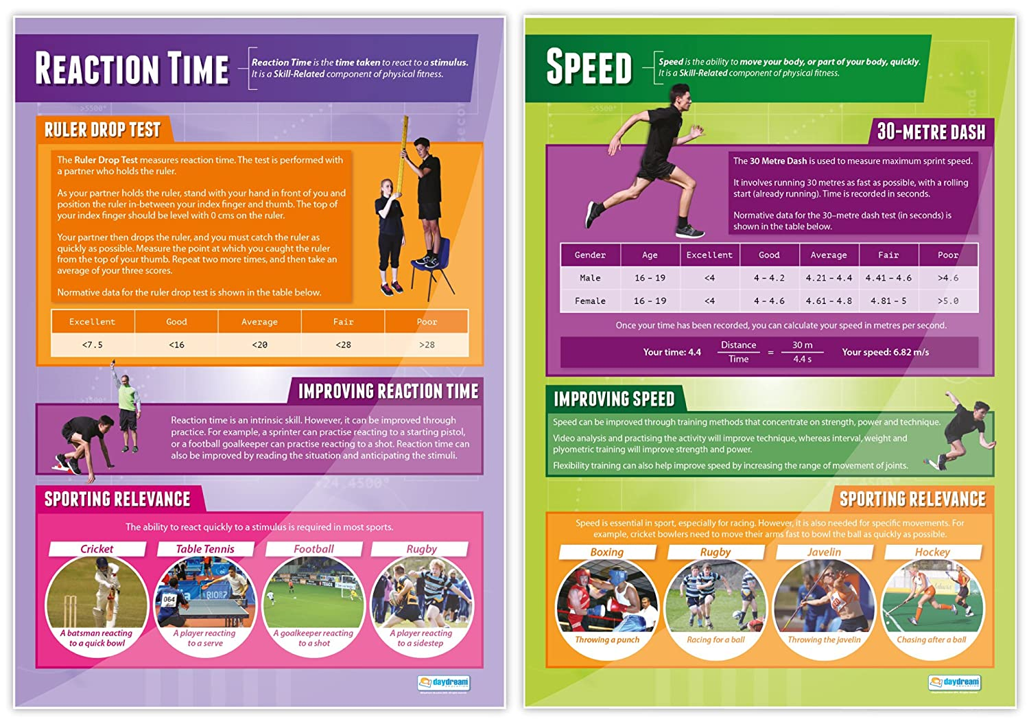 Amazon com : Components of Physical Fitness Posters - Set of