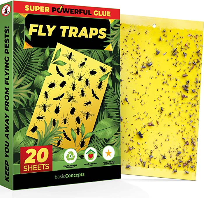 Top 10 Food Fly Trap Indoor