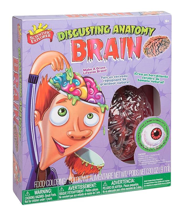 Amazon Scientific Explorer Disgusting Anatomy Brain Toys Games