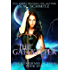 The Gatekeeper (The Guardians of Tara Book 1)