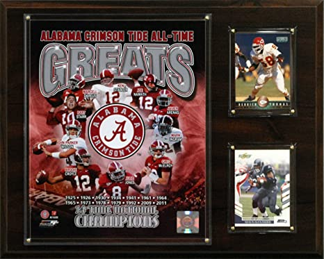 1869604e1 Image Unavailable. Image not available for. Color  NCAA Football Alabama  Crimson Tide ...