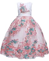 Amberry Little Big Girl's Flower Embroidery Dress