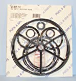 Pac Fab Multiport Valve 2 Gasket & O-Ring Kit Go-Kit 70 with Small Package of Magic Lube