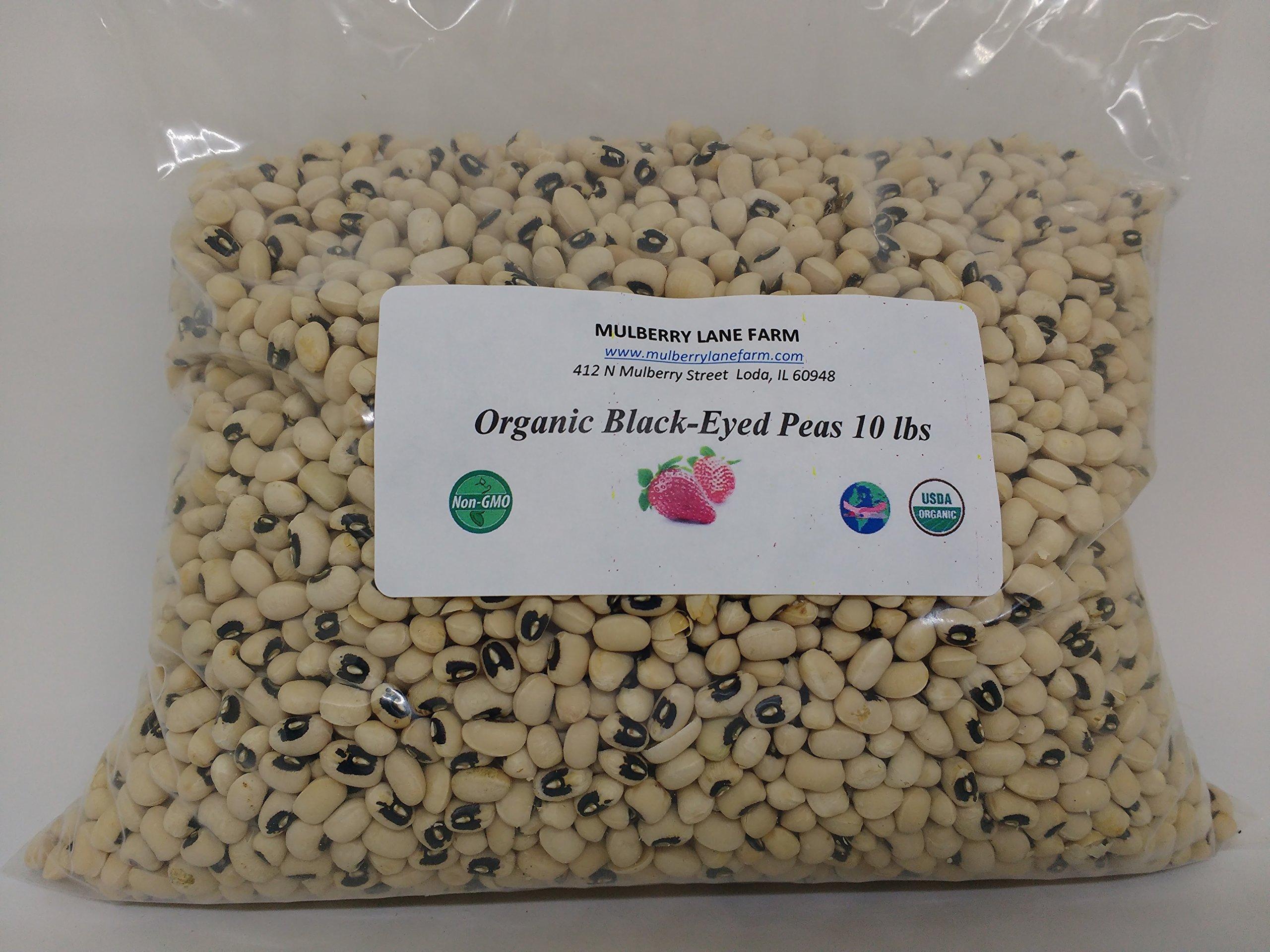 Black-eyed Peas (Beans), 10 lbs (ten pounds), Dried, USDA Certified Organic, Non-GMO, Ships BULK.
