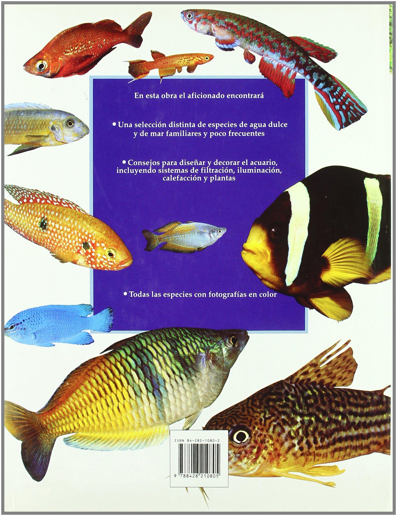 Peces de acuario : una guía completa de peces exóticos de agua dulce y de agua de mar: GINA SANDFORD: 9788428210805: Amazon.com: Books