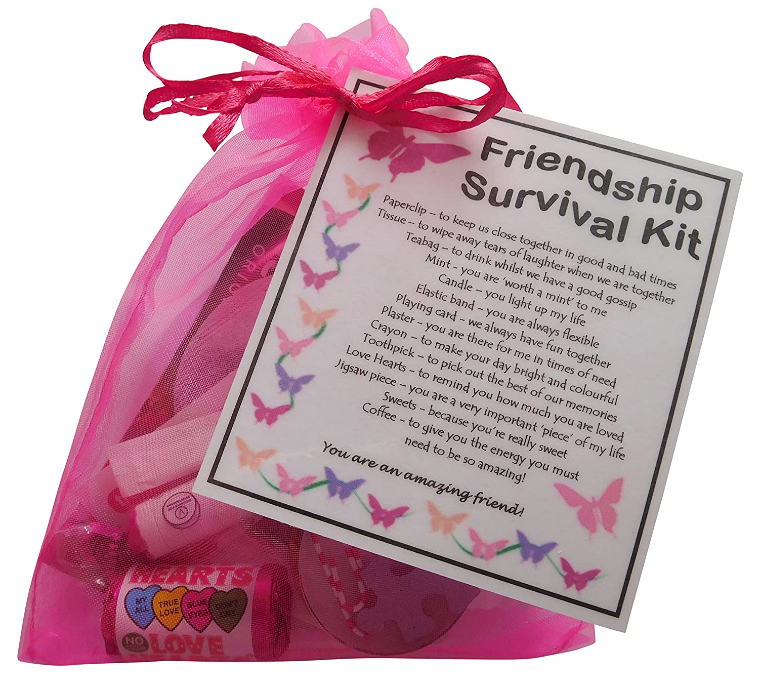 SMILE GIFTS UK Friendship Gift Survival Kit Great Friend For Birthday Or Christmas Ideal BFF