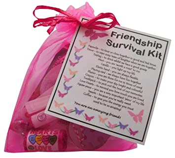 SMILE GIFTS UK Friendship Gift Survival Kit (Great Friend Gift for ...