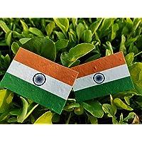 Plantable Seed Paper Indian National Flag | Pocket Badge | Size:3 * 2 (50)