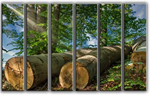 X-Large 6 Piece Tree Trunks in Spring Wall Art Decor Picture Painting Poster Print on Canvas Panels Pieces - Nature Theme Wall Decoration Set - Relaxing and Resting Wall Picture for Living Room
