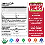 SUPERFOOD VITAL REDS & GREENS | Red & Green