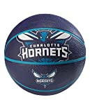 NBA Charlotte Hornets Spaldingteam