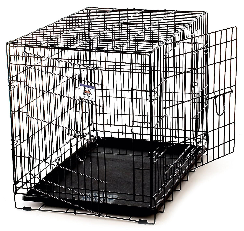 Amazon.com : Little Giant Pet Lodge Medium Double Door Wire Pet ...