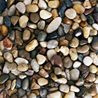 Galashield River Rocks Polished Pebbles Decorative Stones Natural Aquarium Gravel (2 lb Bag)