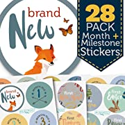 Baby Month & Milestone Stickers - 28 Pack - Baby Boy Onesie Belly Stickers. Includes 12 monthly, 1st year milestones & first holidays. Perfect baby shower & newborn birthday gift. (Woodland)