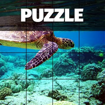 Epic Jigsaw Puzzles Game