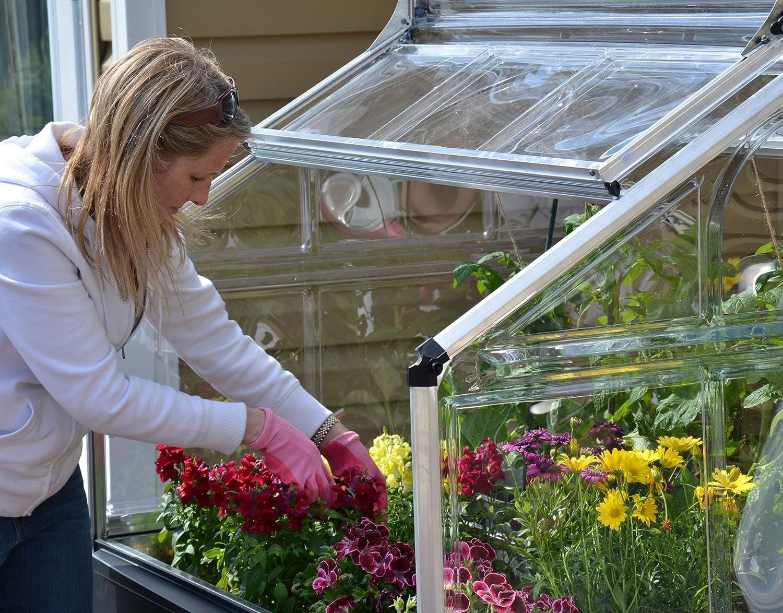 Id/éal pour Faire Pousser des Herbes Aromatiques Cadre en Aluminium Palram Plant Inn /™ Mini Serre de Jardin Polycarbonate Transparent Argent